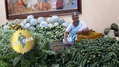 Photo of Did Infosys founder's wife Sudha Murty sell vegetables? | What is the truth?