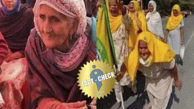 Photo of Did an old woman who participated in Shaheen Bagh protest also takes part in the farmers struggle?